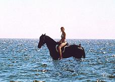 Александра Соловьёва. Обожаем плавать.